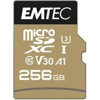 SpeedIN Pro memoria flash 256 GB MicroSDXC UHS I Classe 10, Scheda di memoria