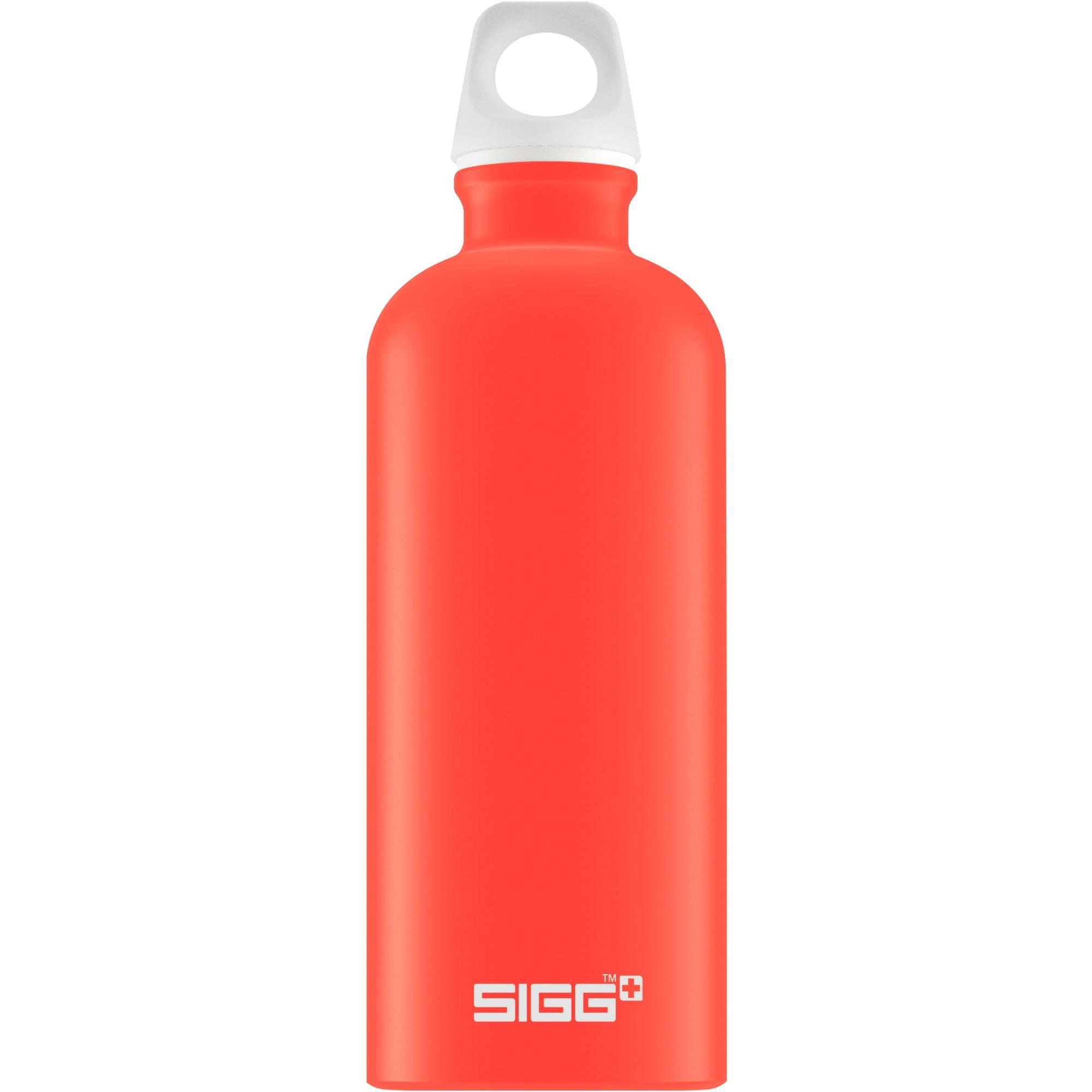 Sigg dynamic touch water bottle prezzi migliori offerte for Botole per tetti prezzi